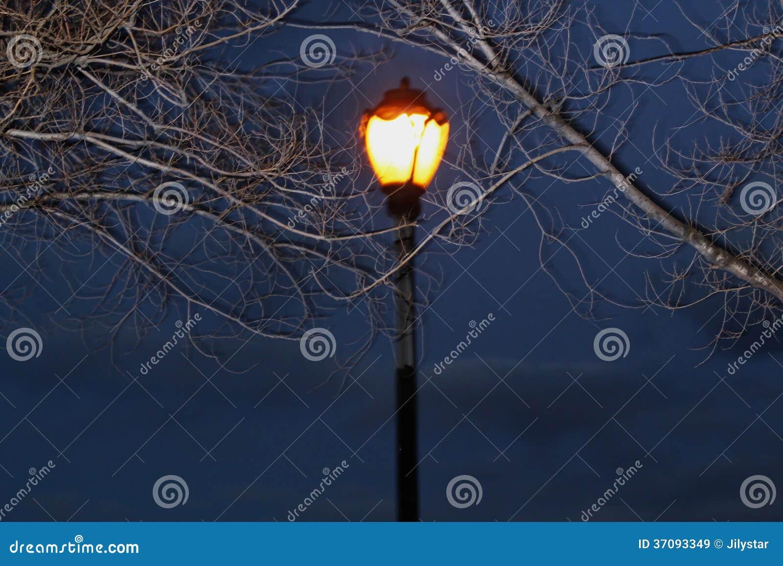 Download Lampa w nocy obraz stock. Obraz złożonej z ciemność, lampion - 37093349