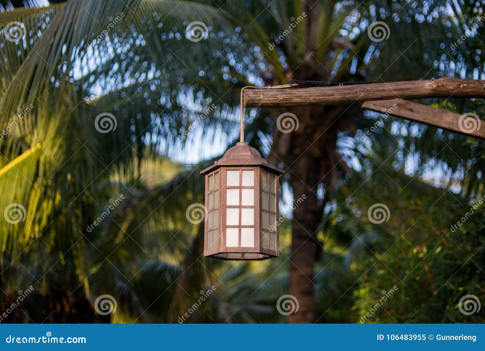 Lampade A Sospensione Allaperto : Lampada per illuminazione all aperto che appende sull albero nel