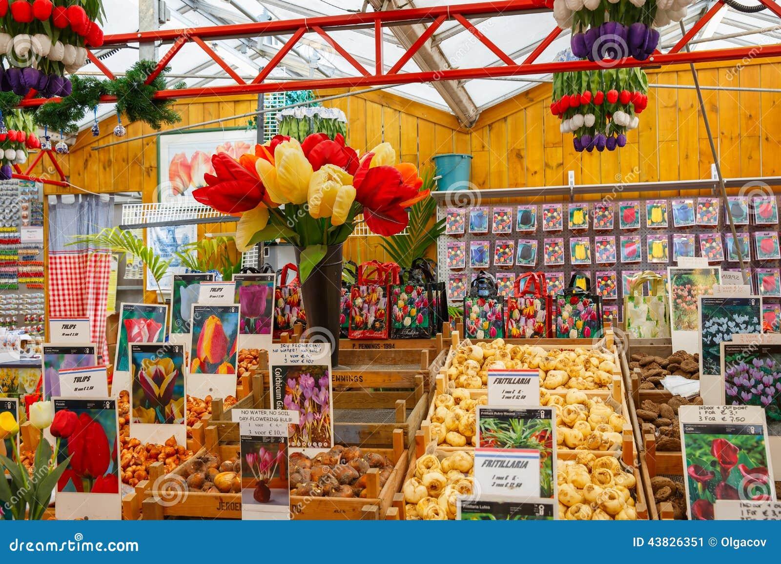 Lampadine del tulipano sul mercato di galleggiamento famoso del fiore a Amsterdam