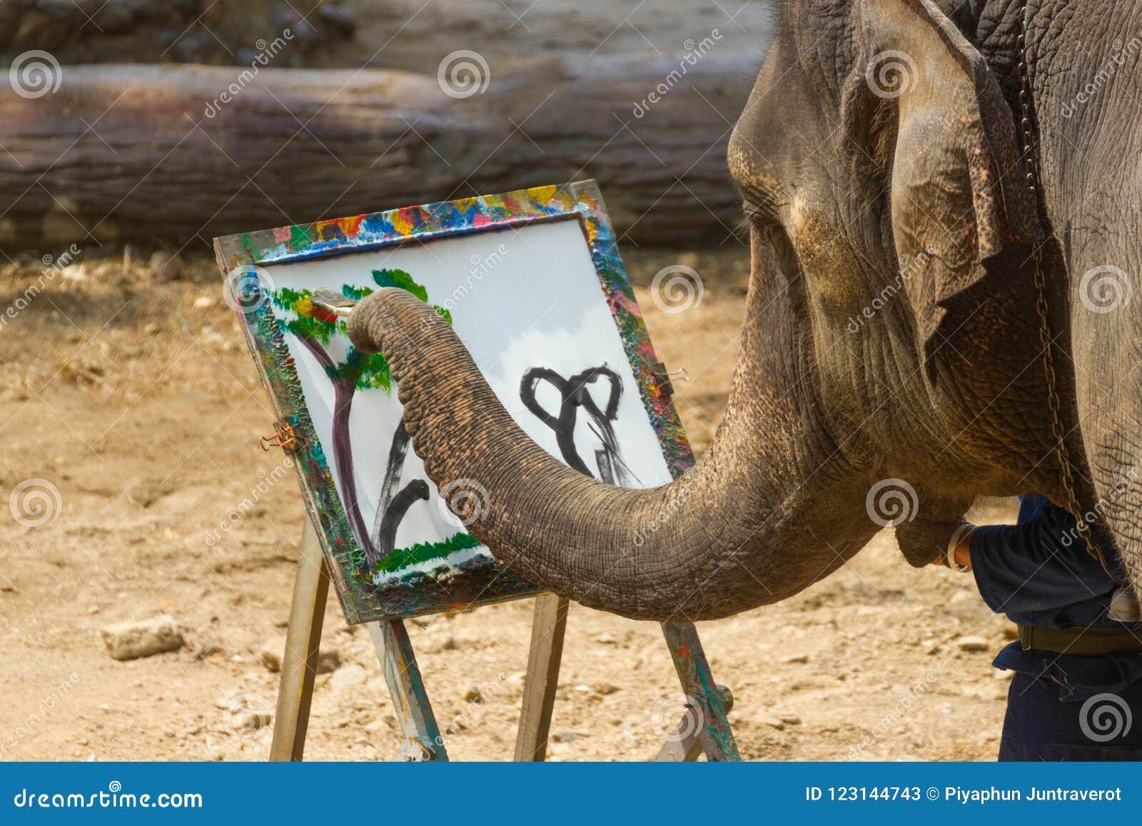 LAMPANG, TAILANDIA - 13 aprile 2017: - pittura dell elefante nel telaio dell albero dell immagine alla conservazione tailandese d