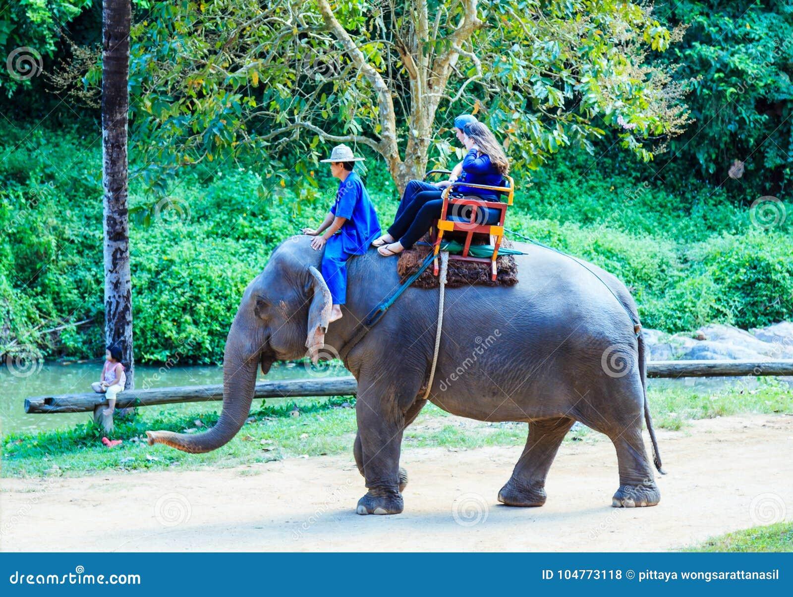 Lampang, Thailand - 26. November 2017: Mahout und touristische Fahrt O