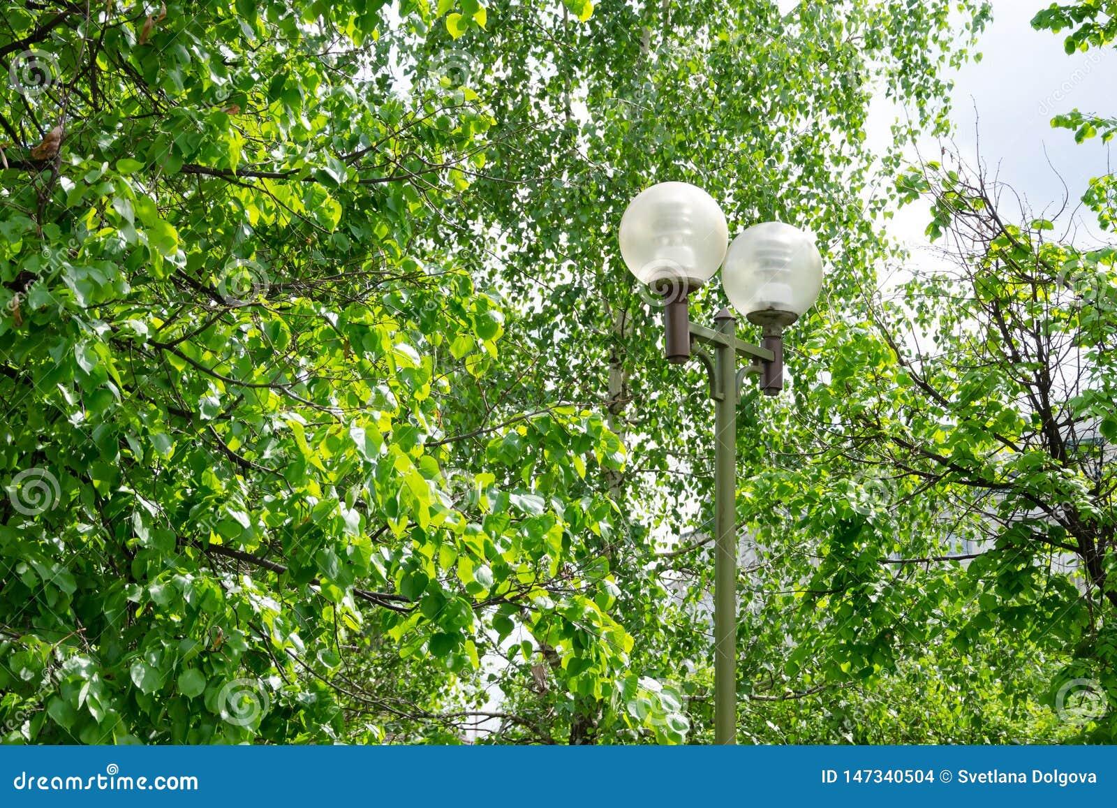 Lampe de jardin avec les nuances sphériques