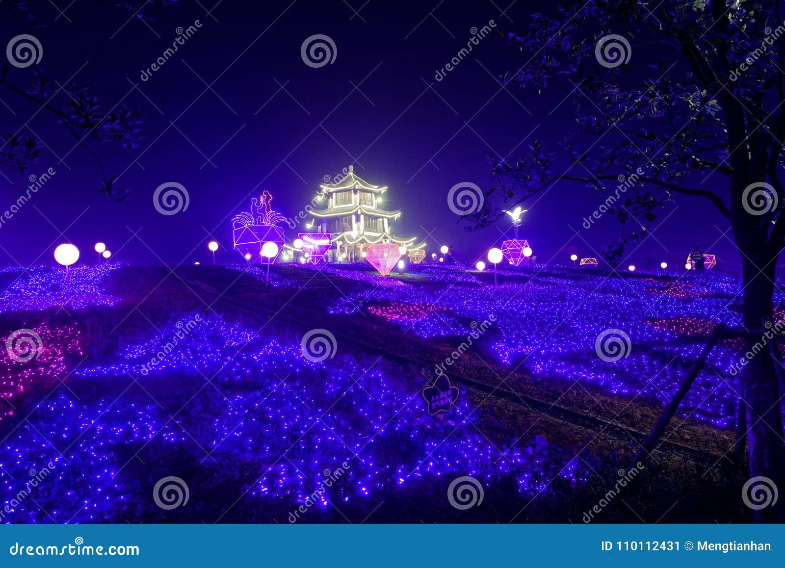 Lampes au néon avec de formes-Le le festival de lanterne différent d abord à Nan-Tchang
