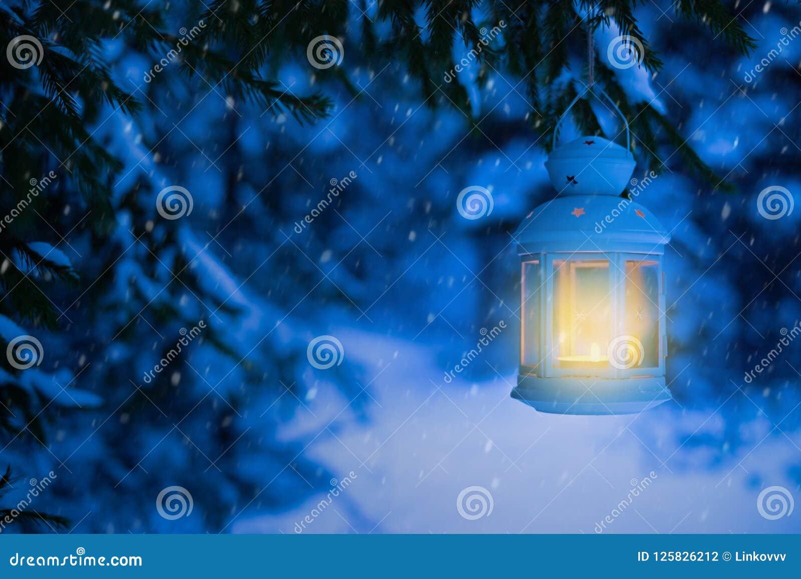 Lampion dla bożych narodzeń w drewnach pod drzewem Lampion z