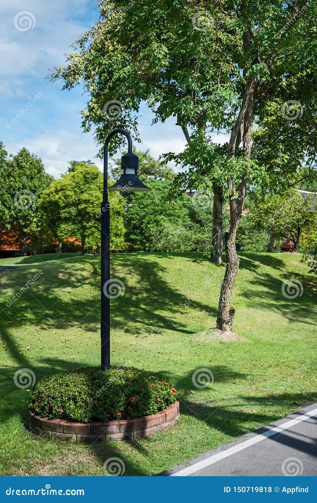 Lamps in the garden