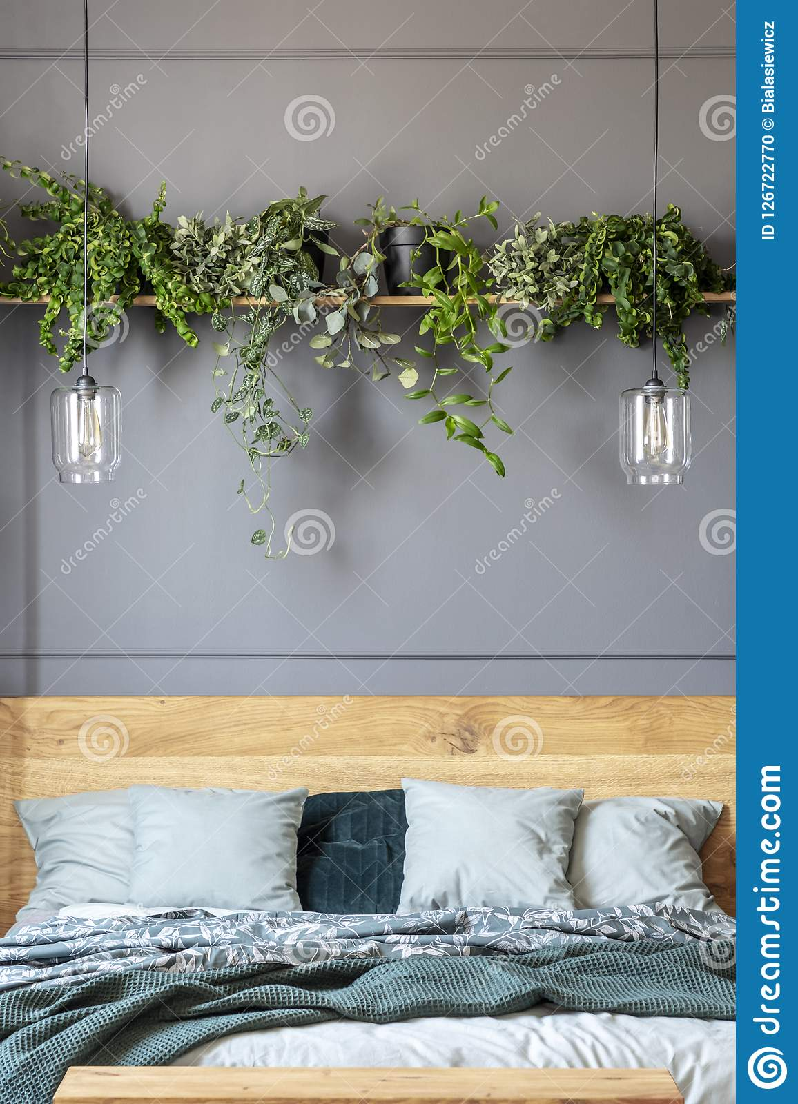 Lamps And Plants Above Wooden Bed With Green Blanket In Grey Bed Stock Photo Image Of Hotel Dark 126722770