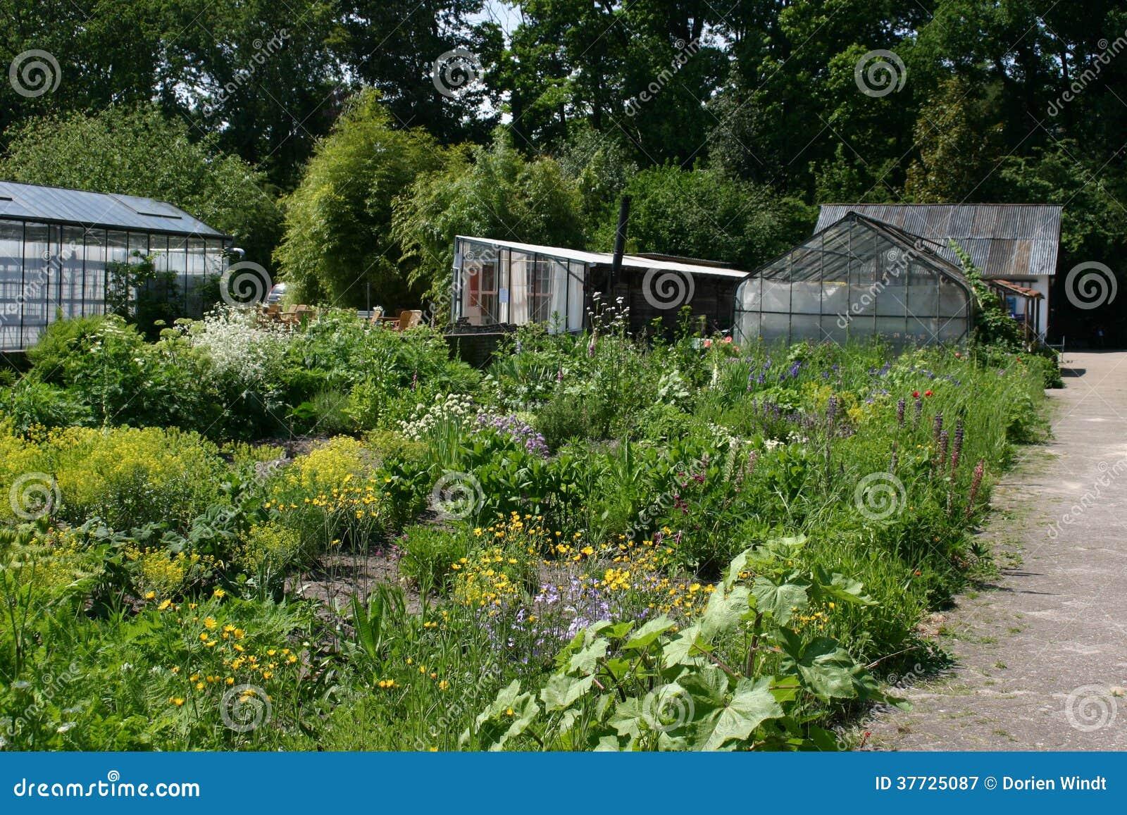 Land and Biological horticulture Boschzigt