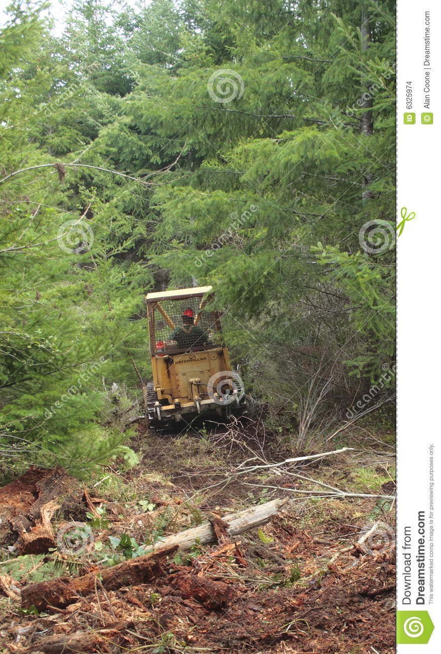 Firewood And Land Clearing Services Business Plan