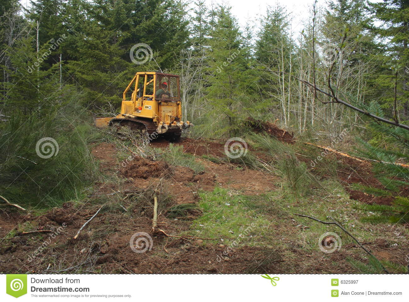 Free Land Clearing Service Business Plan