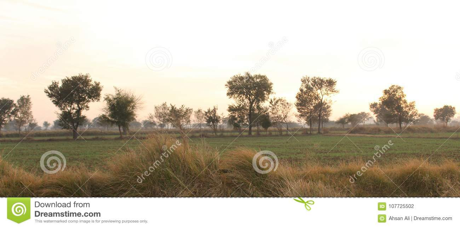Land en gebieden van Punjab