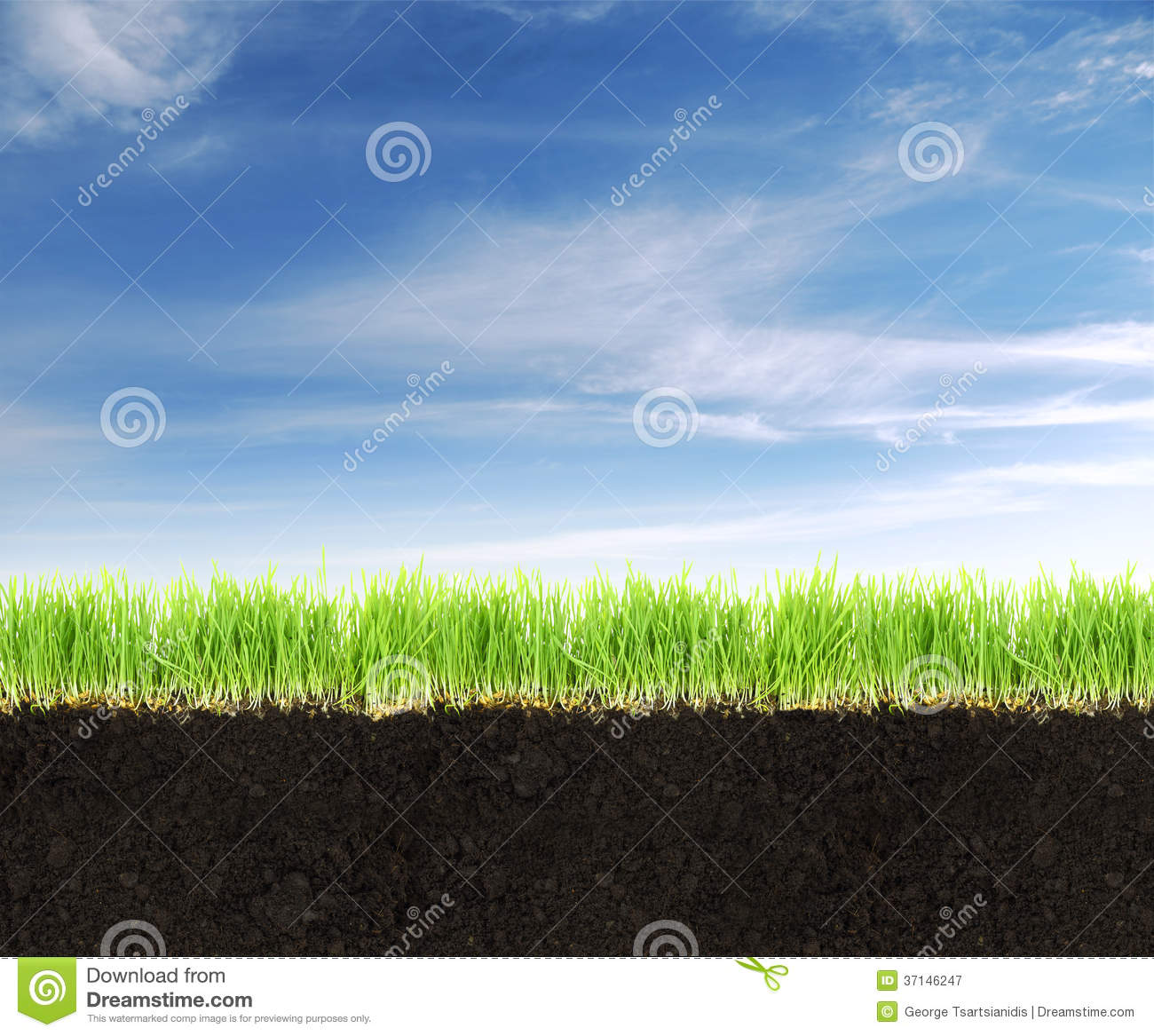 Land With Soil,grass And Blue Sky. Stock Image