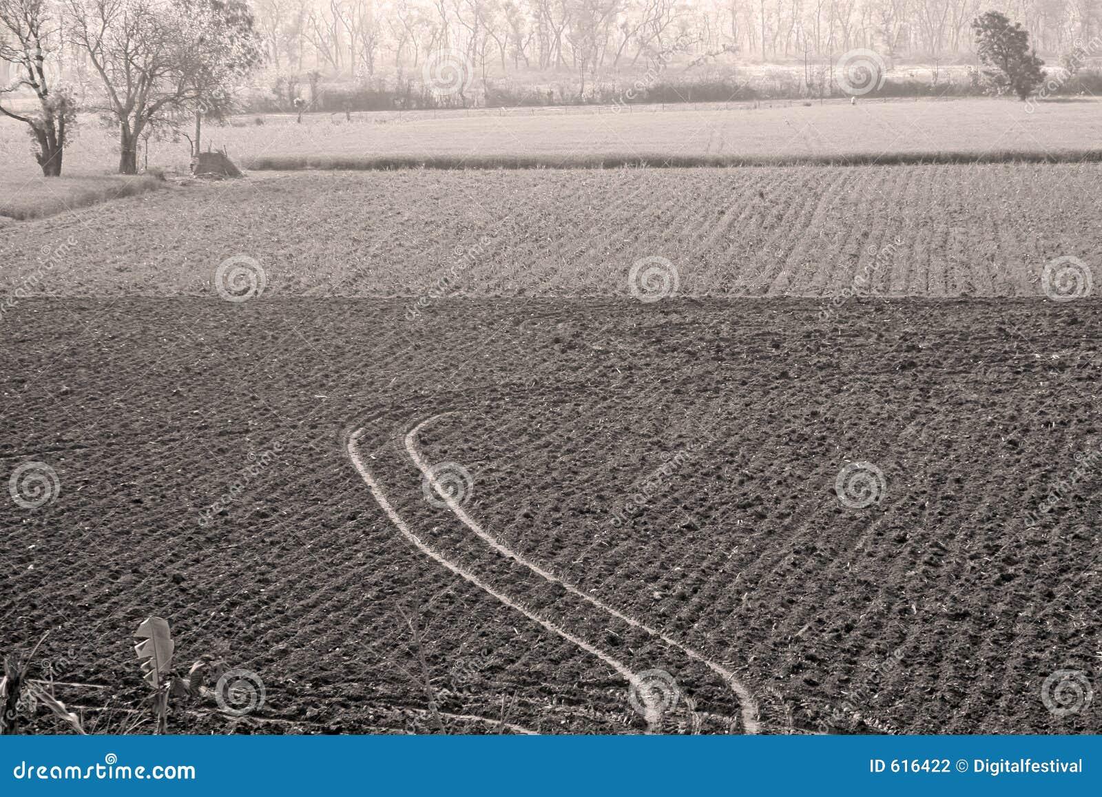 Landbouw, cultuur en de Landbouw