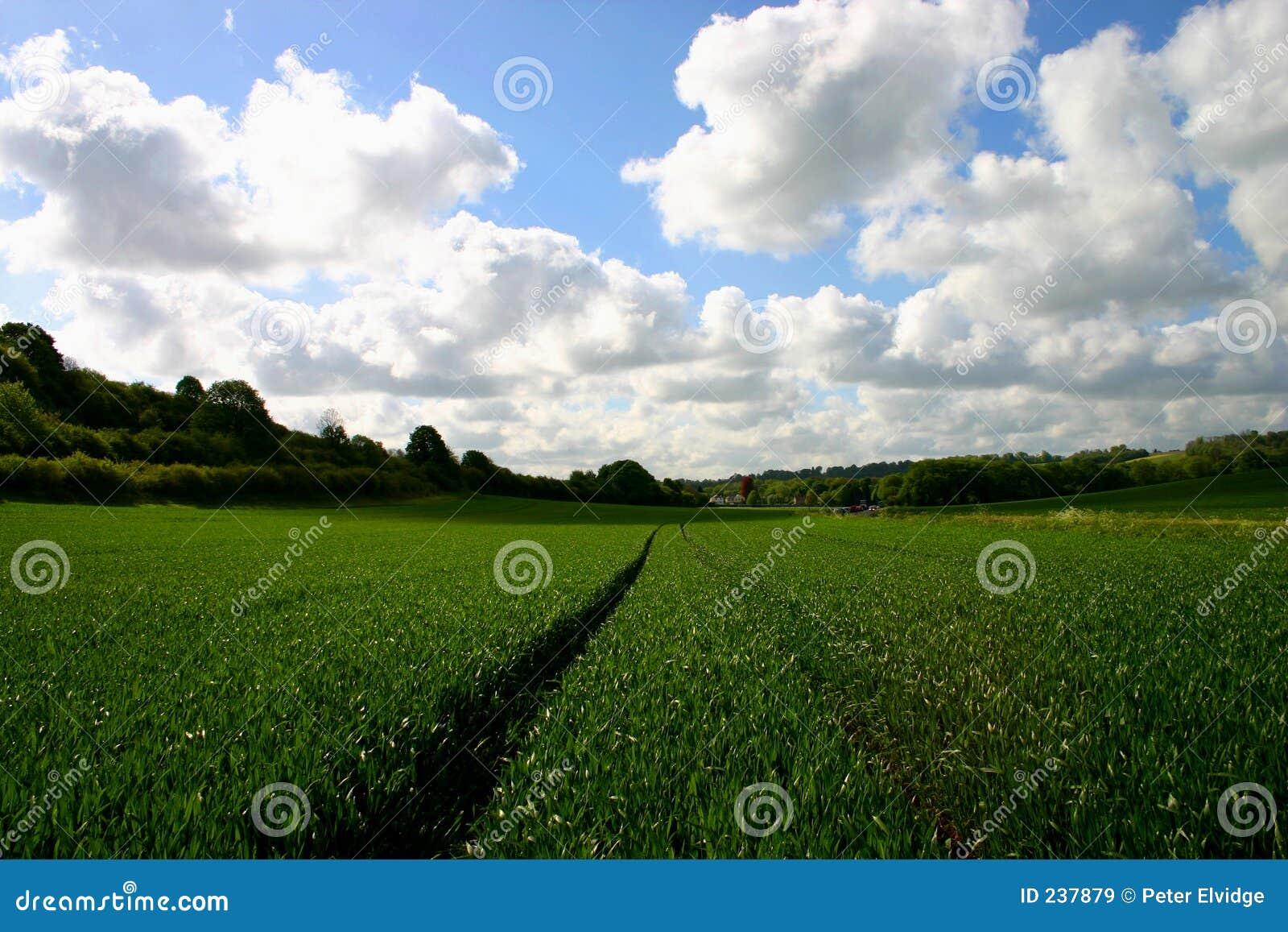 Landbouw gebied