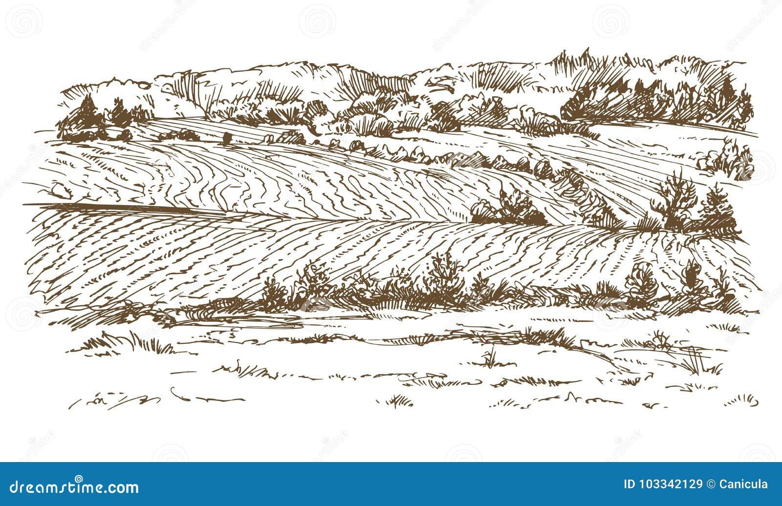 Landbouw landschap Weiden en gebieden