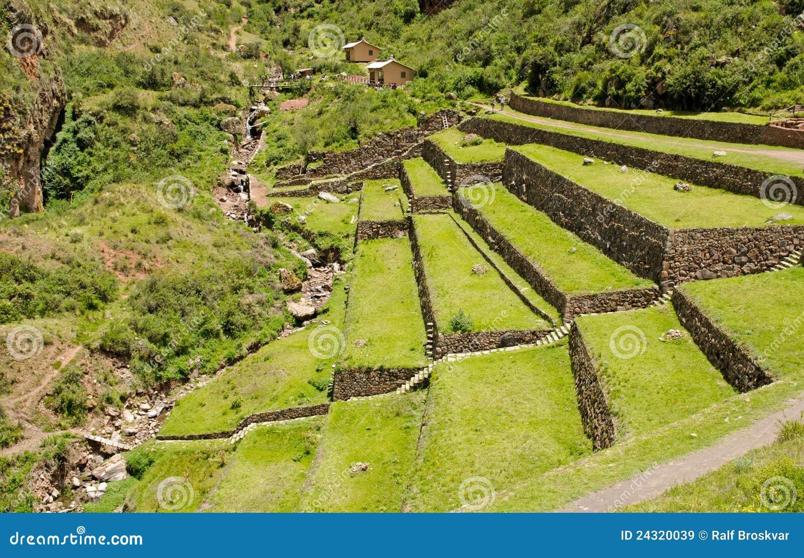 Landbouw terrassen bij de inca plaats pisac peru royalty vrije stock afbeeldingen beeld 24320039 - Afbeeldingen van terrassen verwachten ...
