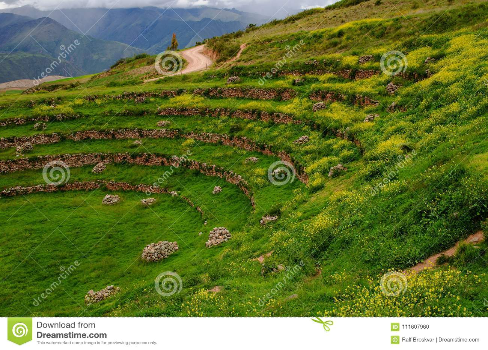 Landbouw Terrassen Inca in Moray, Peru