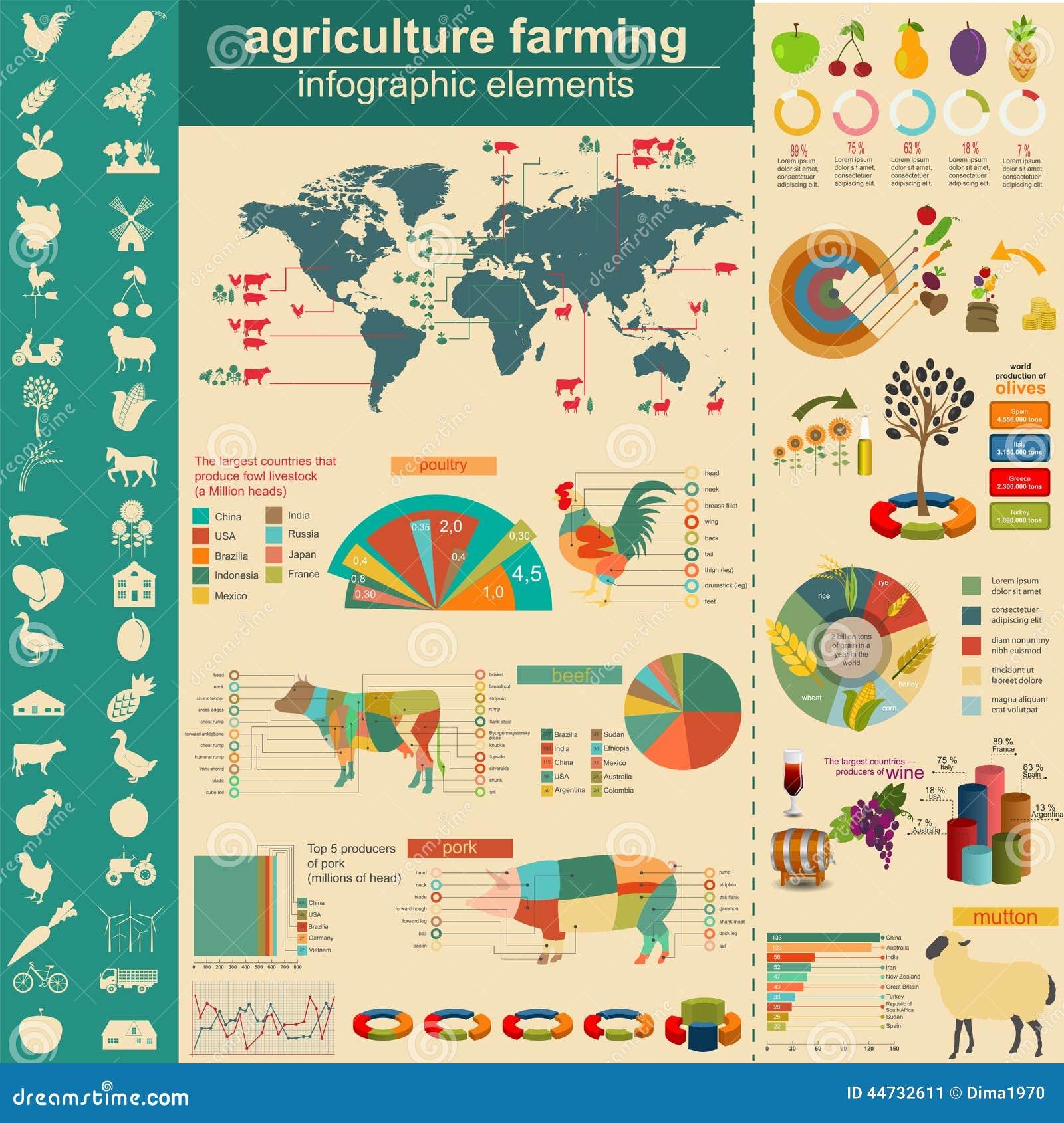 Landbouw, veeteeltinfographics, Vector illustrationstry informatiegrafiek