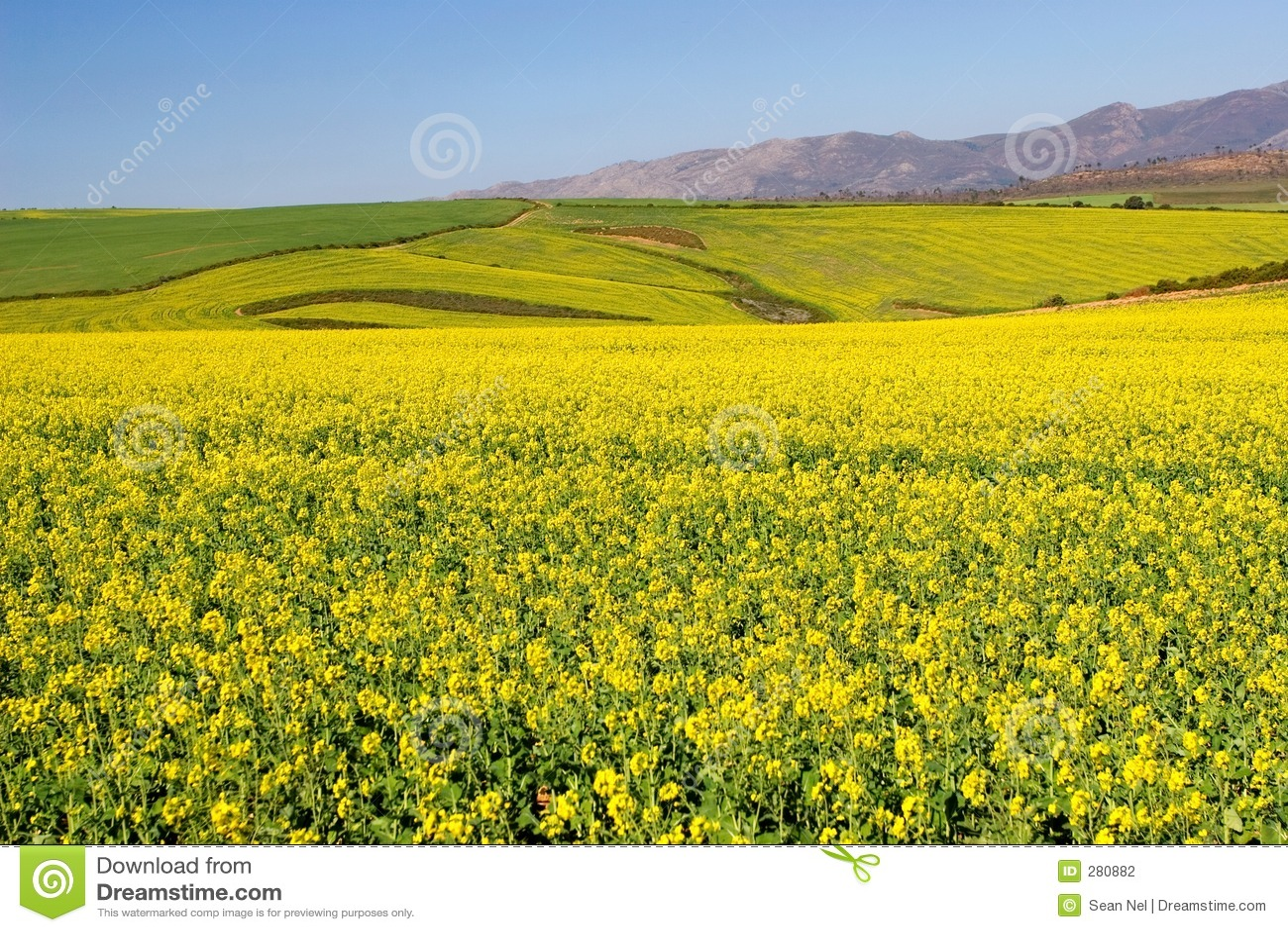 Landbouwbedrijf #8