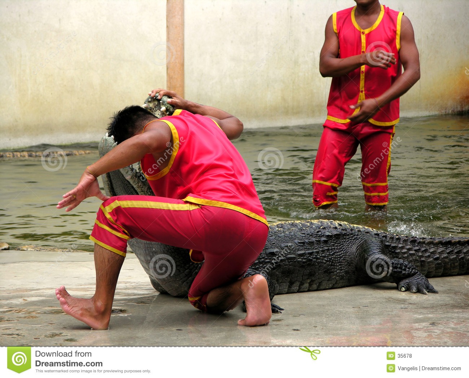 Landbouwbedrijf en Dierentuin 3 van de Krokodil van Samutprakan