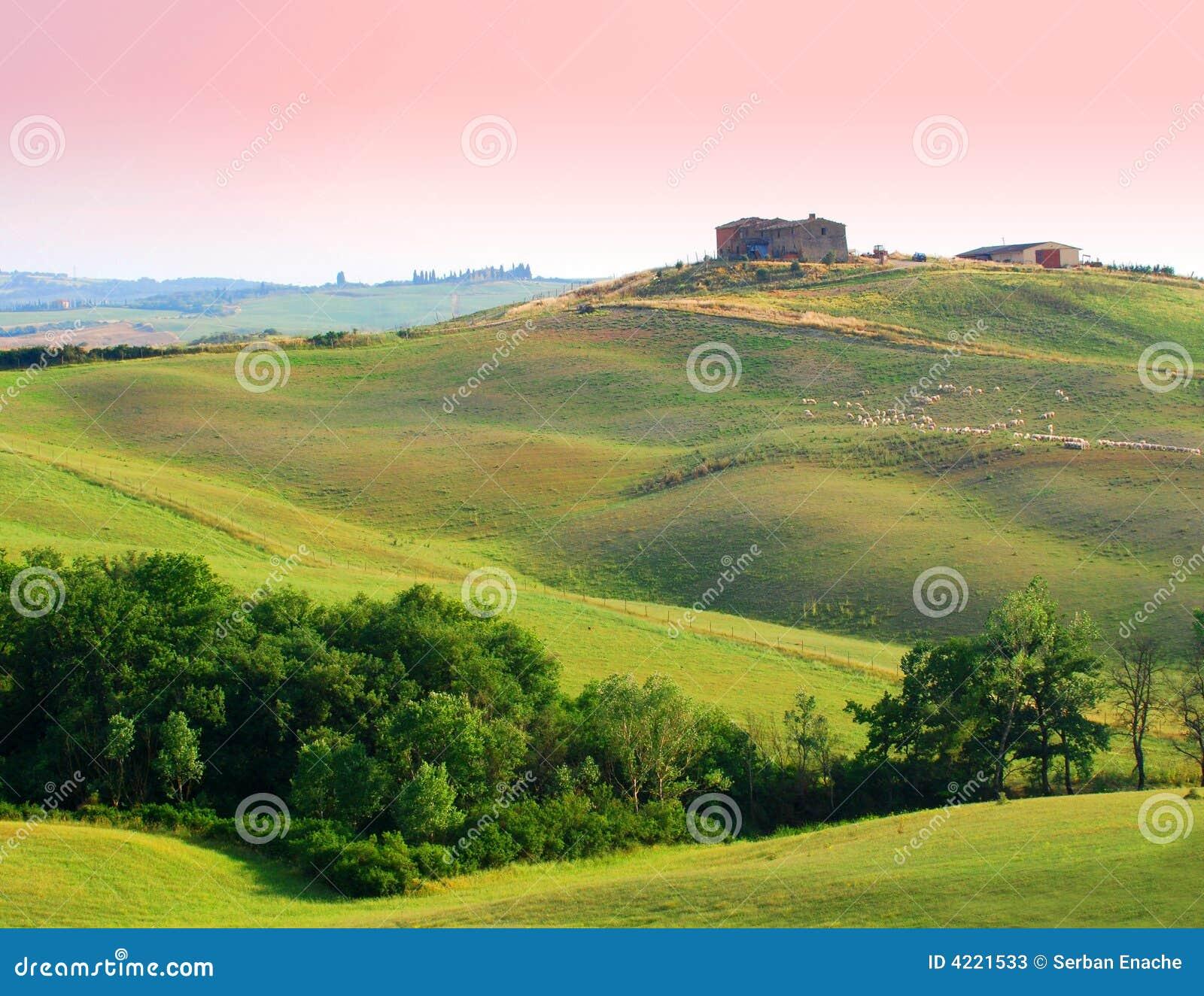 Landbouwbedrijf in Toscanië