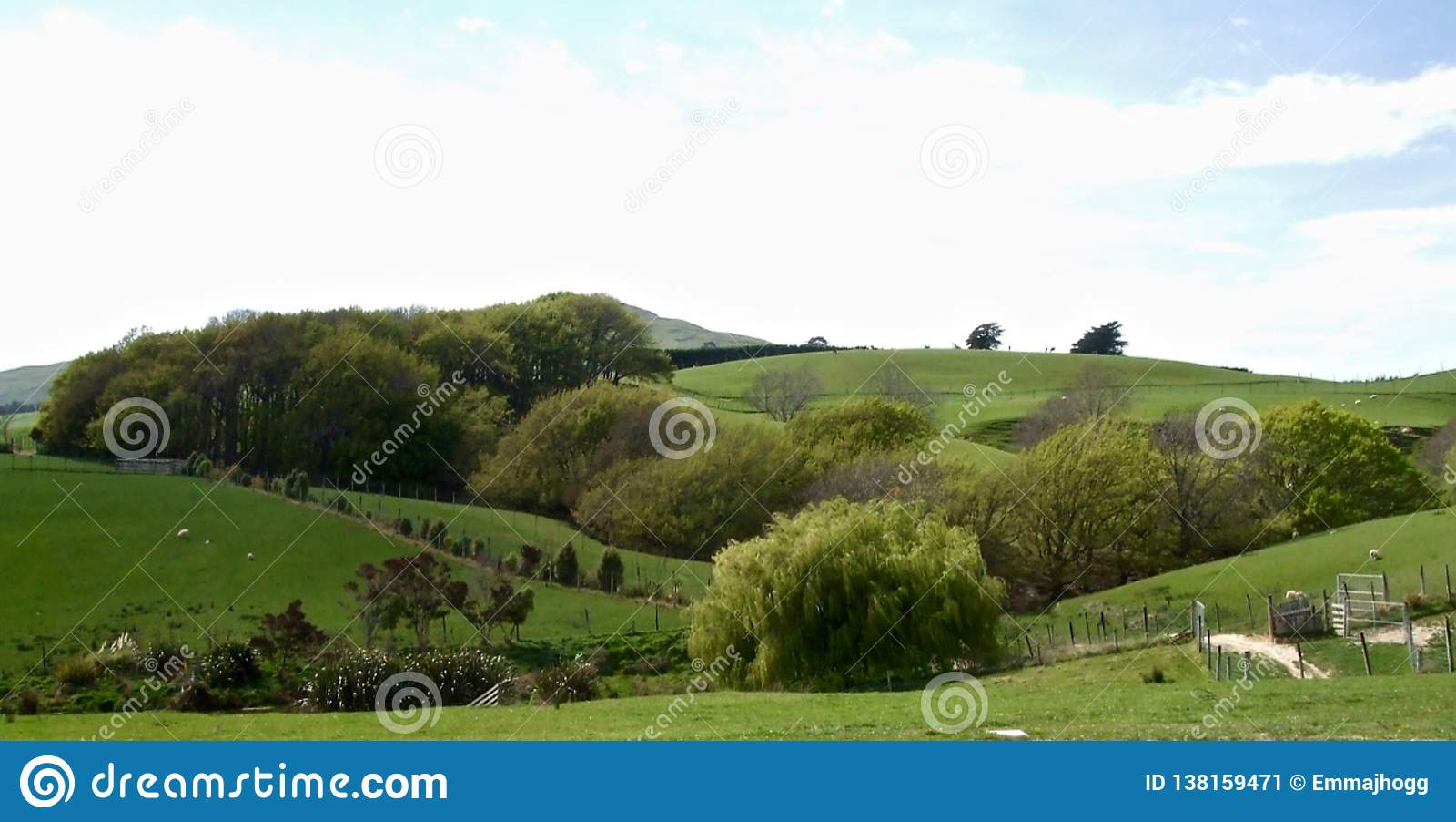 Landbouwbedrijflandschap op een de Zomerdag in Otago