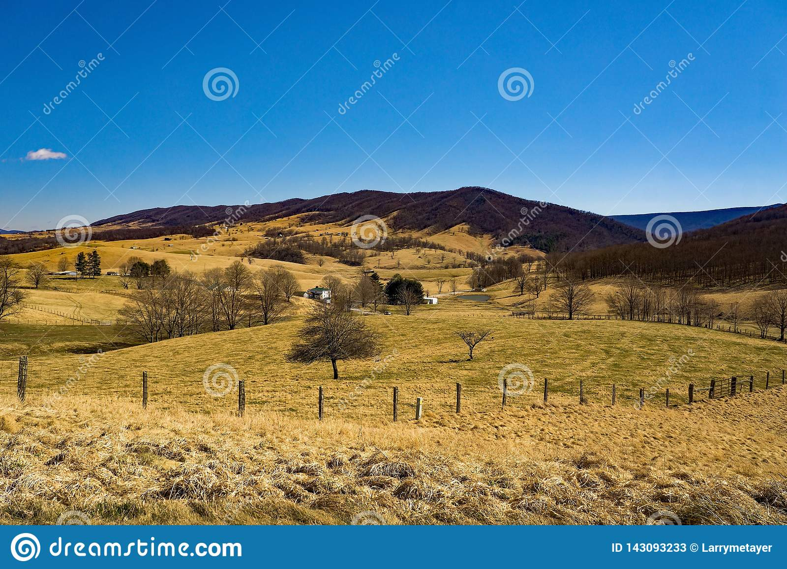 Landbouwbedrijven in Blauwe Grasvallei