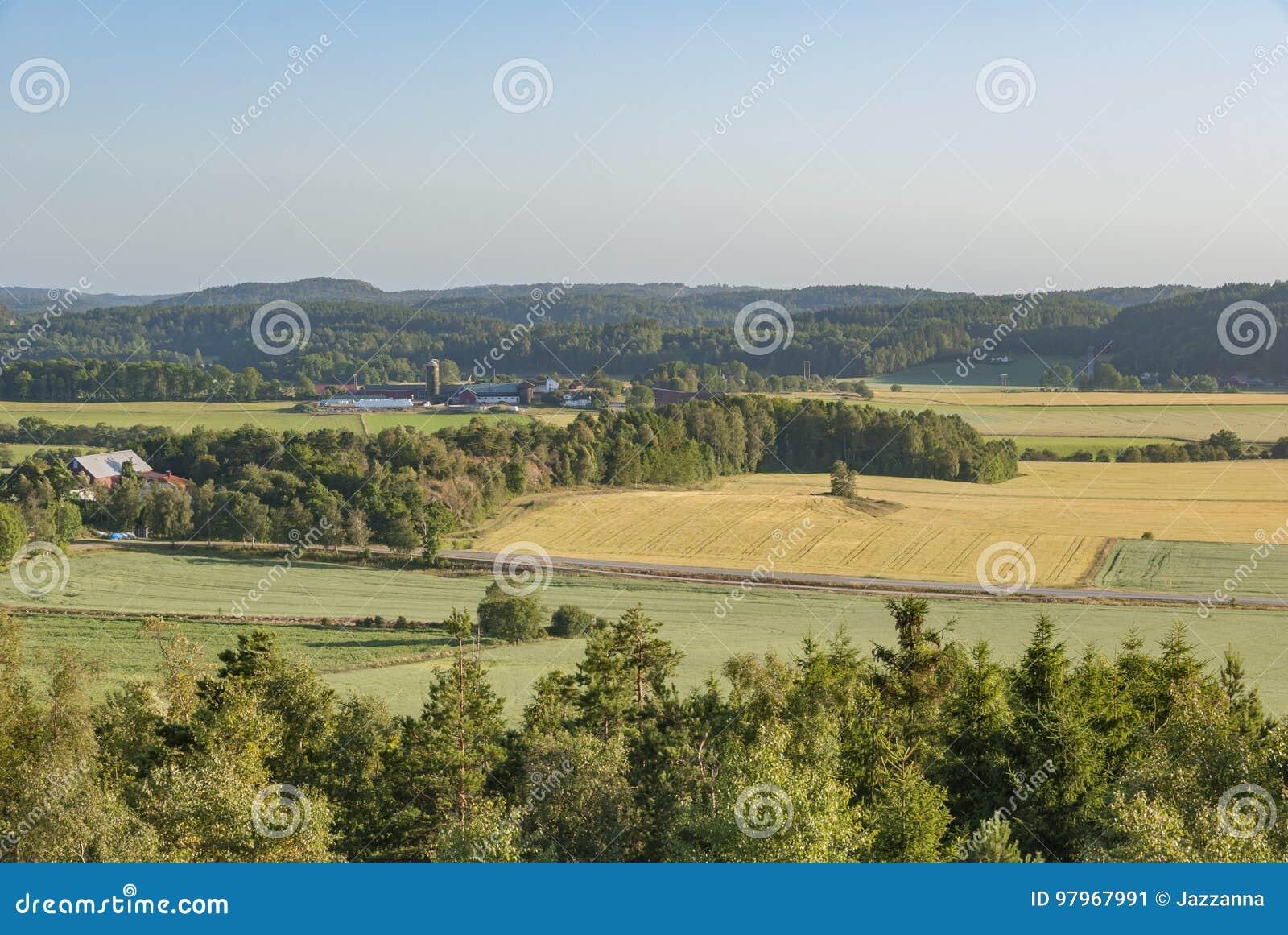 Landbouwbedrijven en gebieden in landelijk Zweden