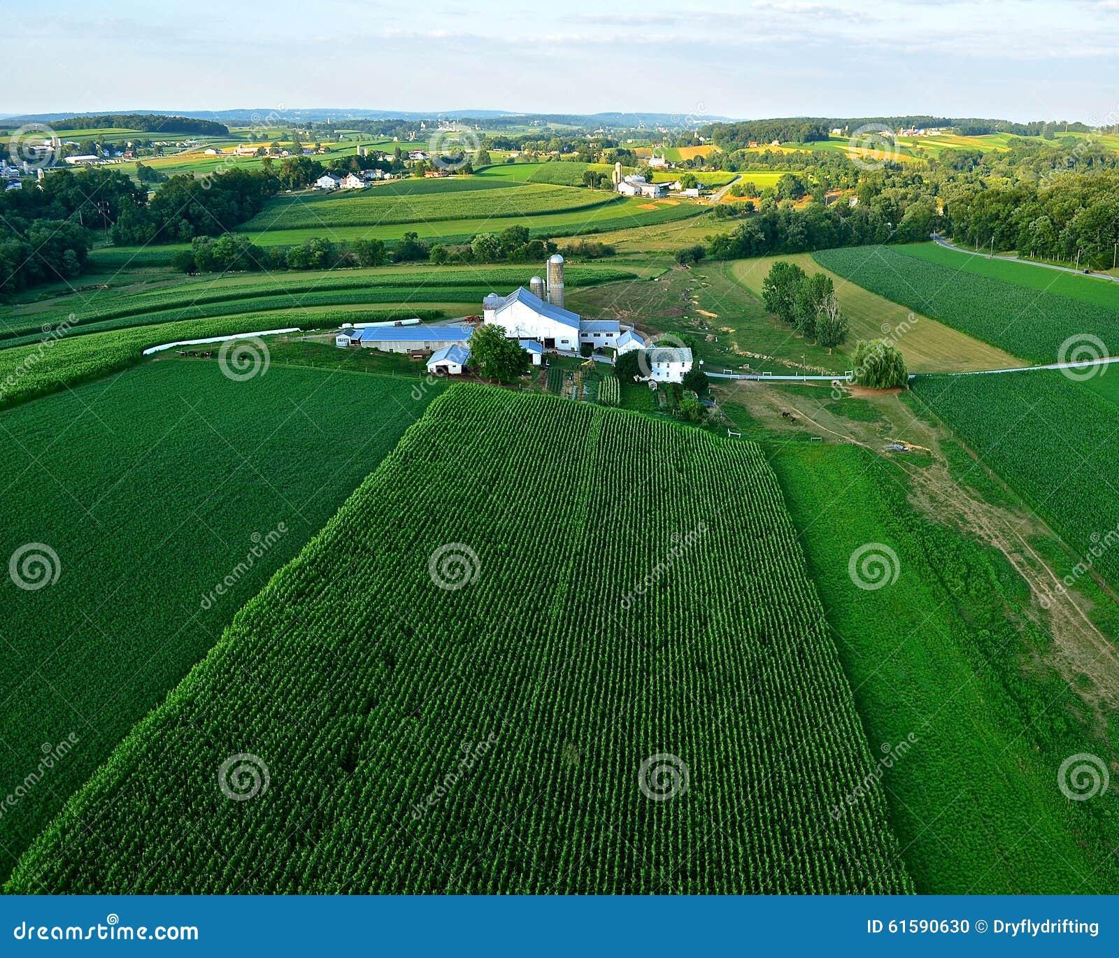Landbouwbedrijven en gebieden van lancaster de pa van de provincie