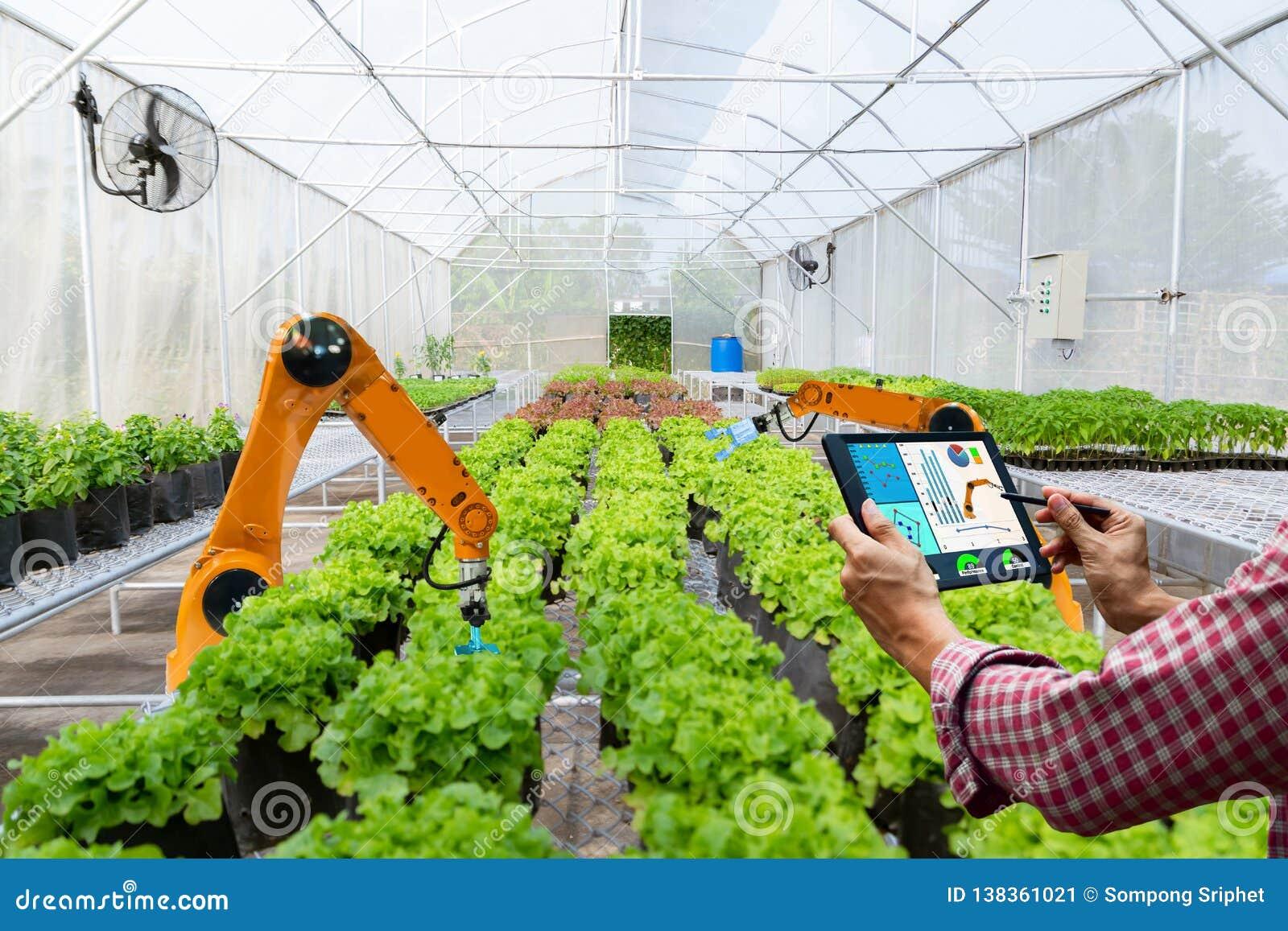 Landbouwer die een tablet slimme robotachtige oogst in automatisering van de landbouw de futuristische robot houden om technologi