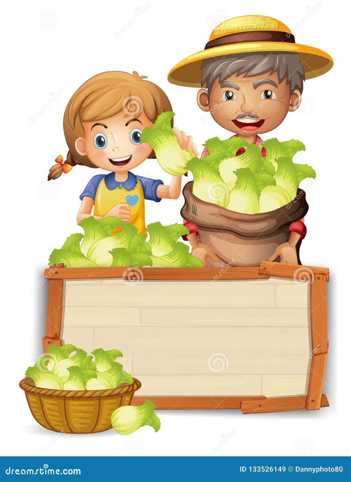Landbouwer met sla op houten raad