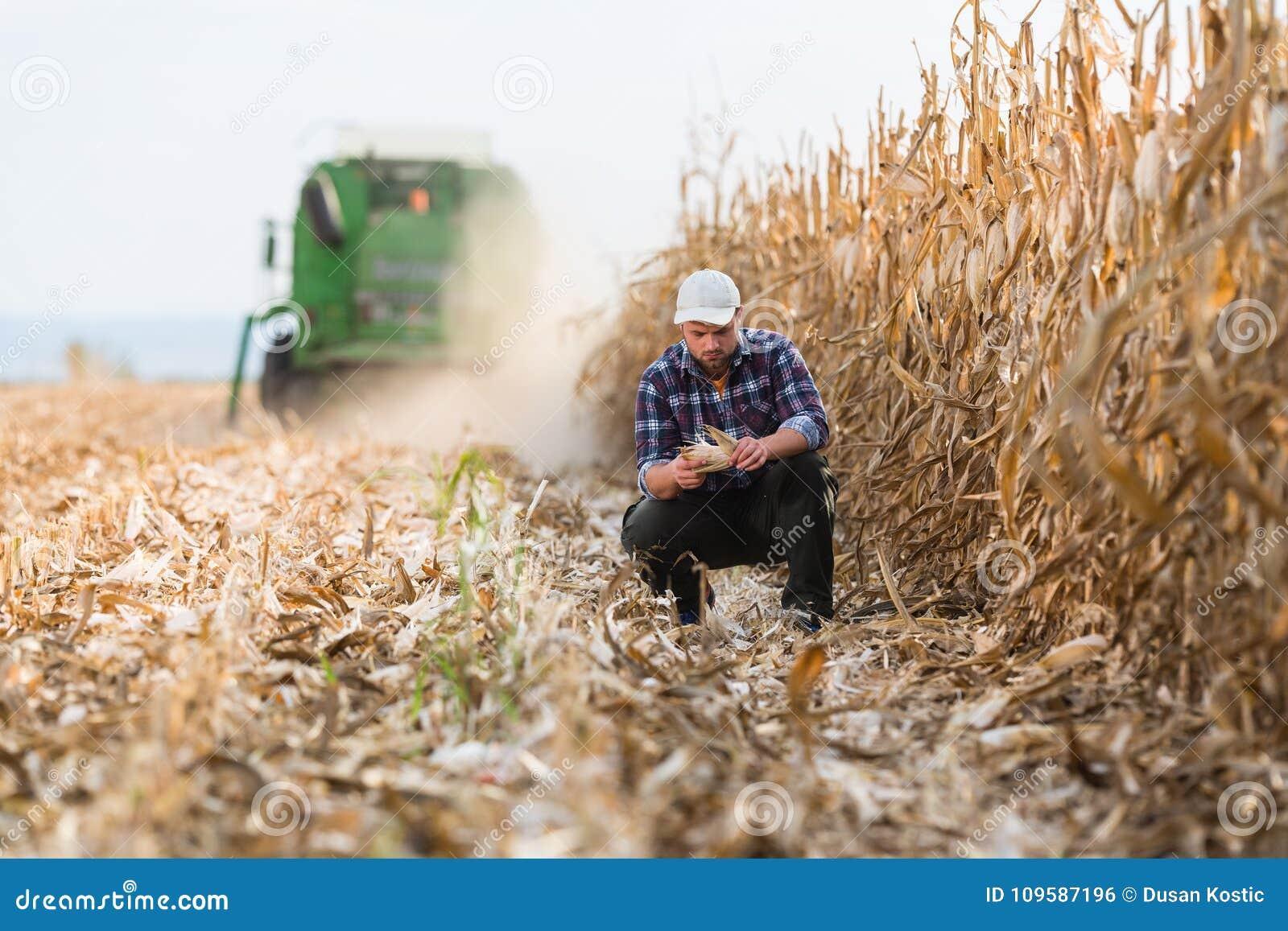 Landbouwer op graangebieden