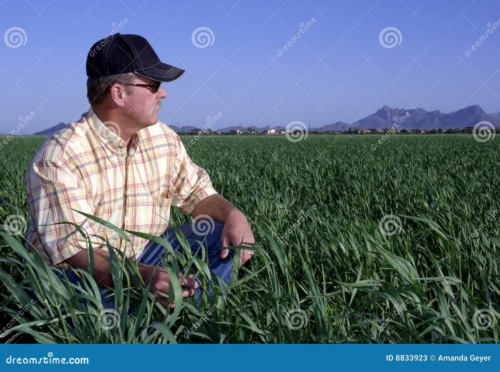 Landbouwer op tarwegebied