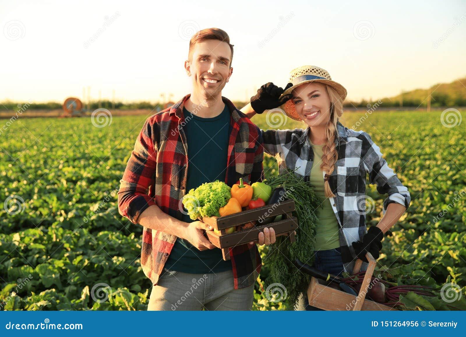 Landbouwers met verzamelde groenten op gebied