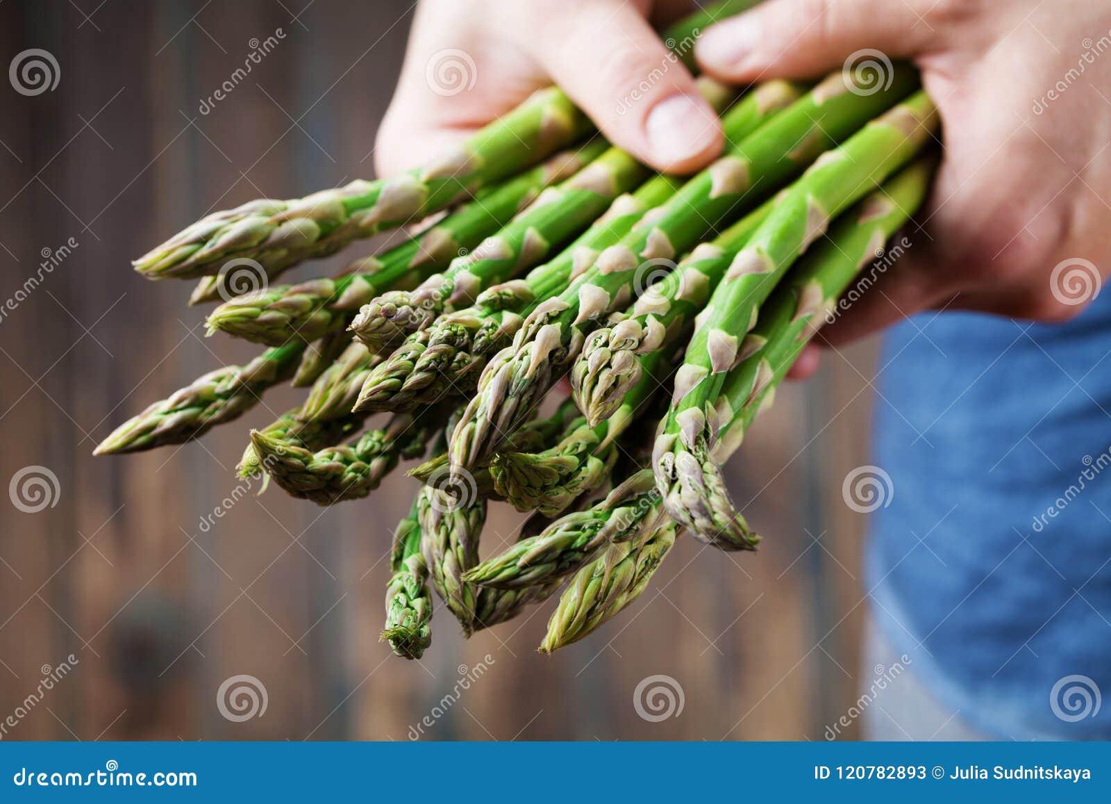 Landbouwersholding in handen de oogst van verse groene asperge Organische en dieetgroenten