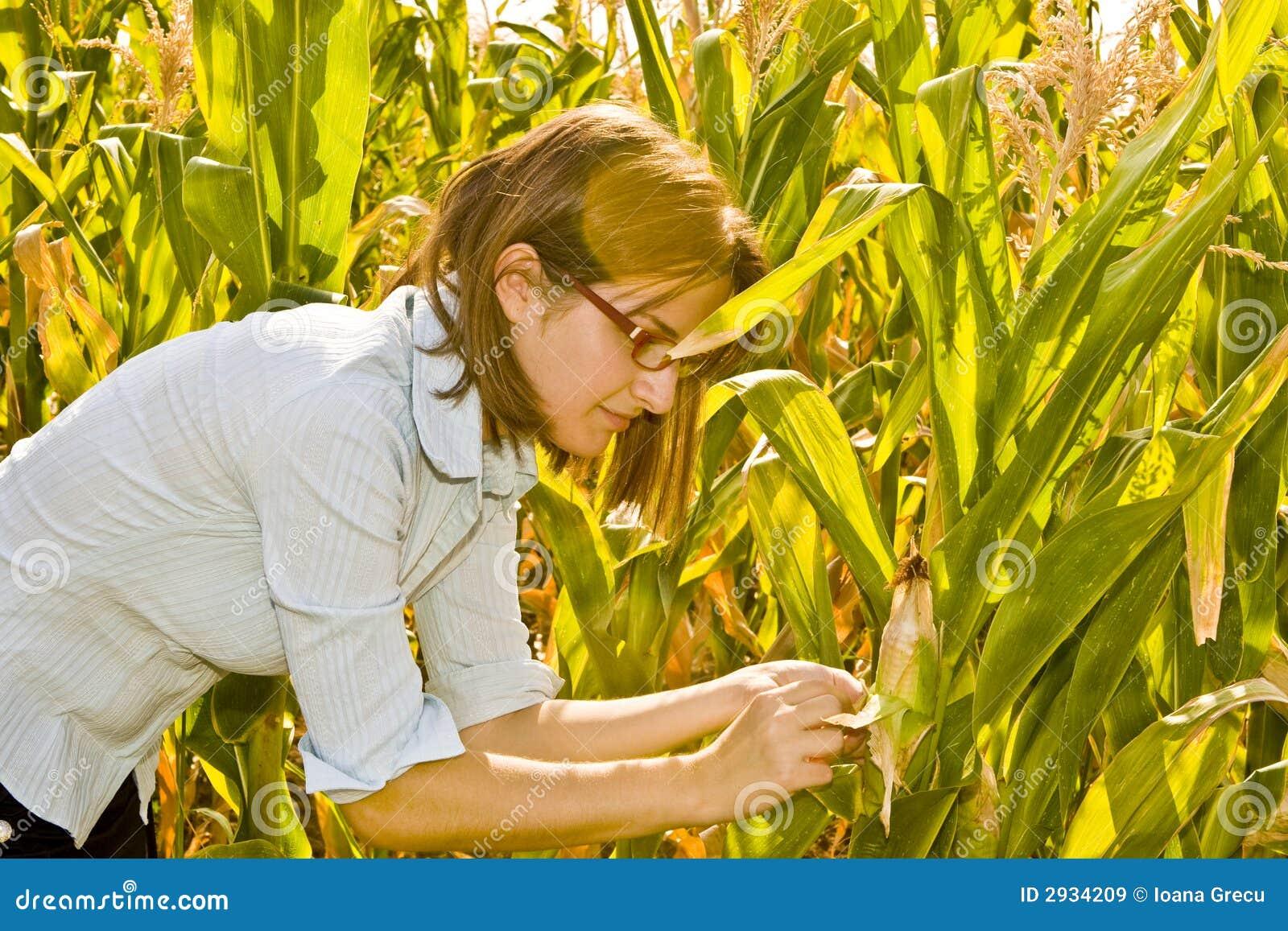Landbouwingenieur