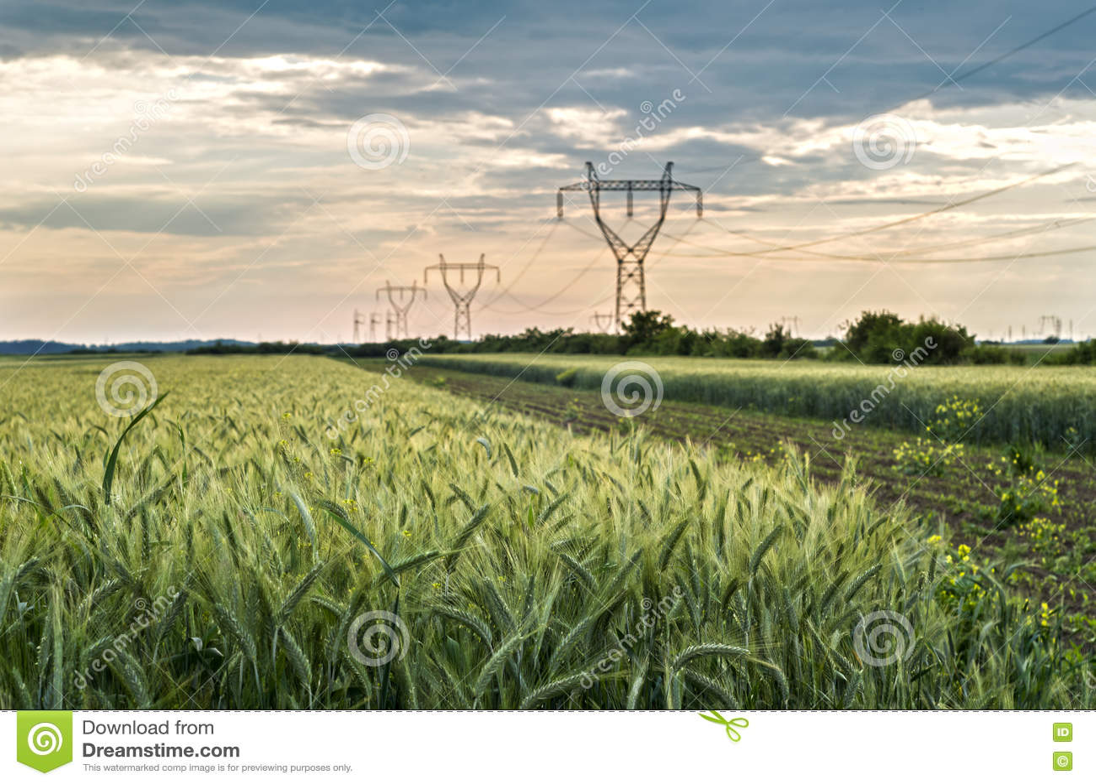Landbouwtarwegebieden