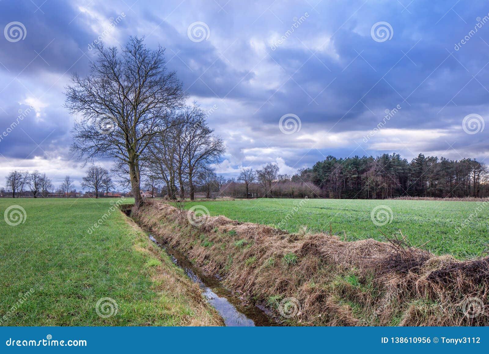 Landelijk landschap, gebied met bomen dichtbij een sloot met dramatische wolken bij schemering, Weelde, Vlaanderen, België