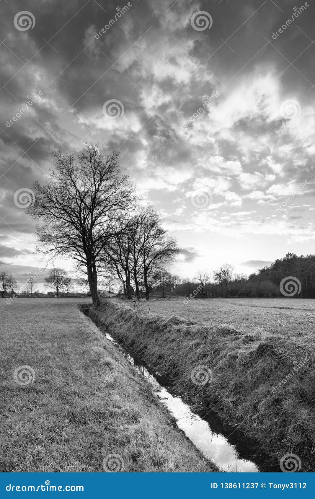 Landelijk landschap, gebied met bomen dichtbij een sloot en zonsondergang met dramatische wolken, Weelde, België
