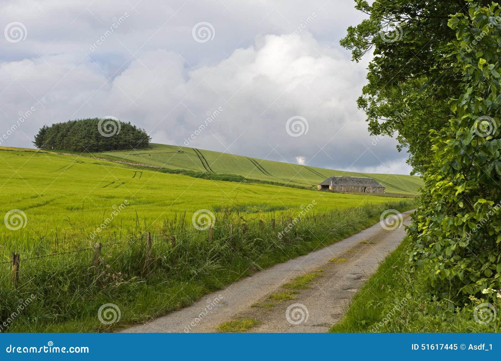Landelijk landschap in het Oosten Neuk van Fife