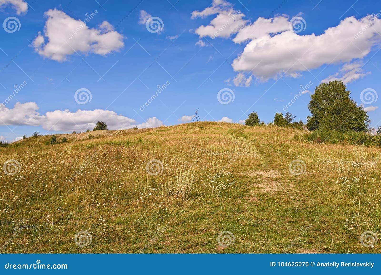 Download Landelijke De Zomerlandschappen Stock Foto - Afbeelding bestaande uit gerst, licht: 104625070