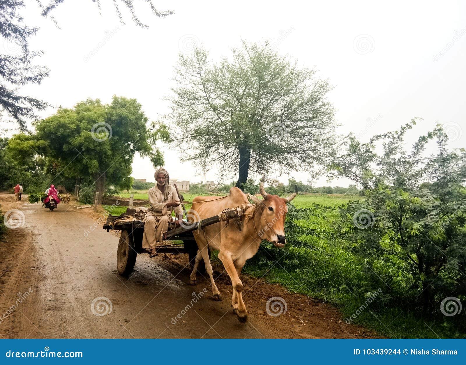 Landelijke dorpsscène van India