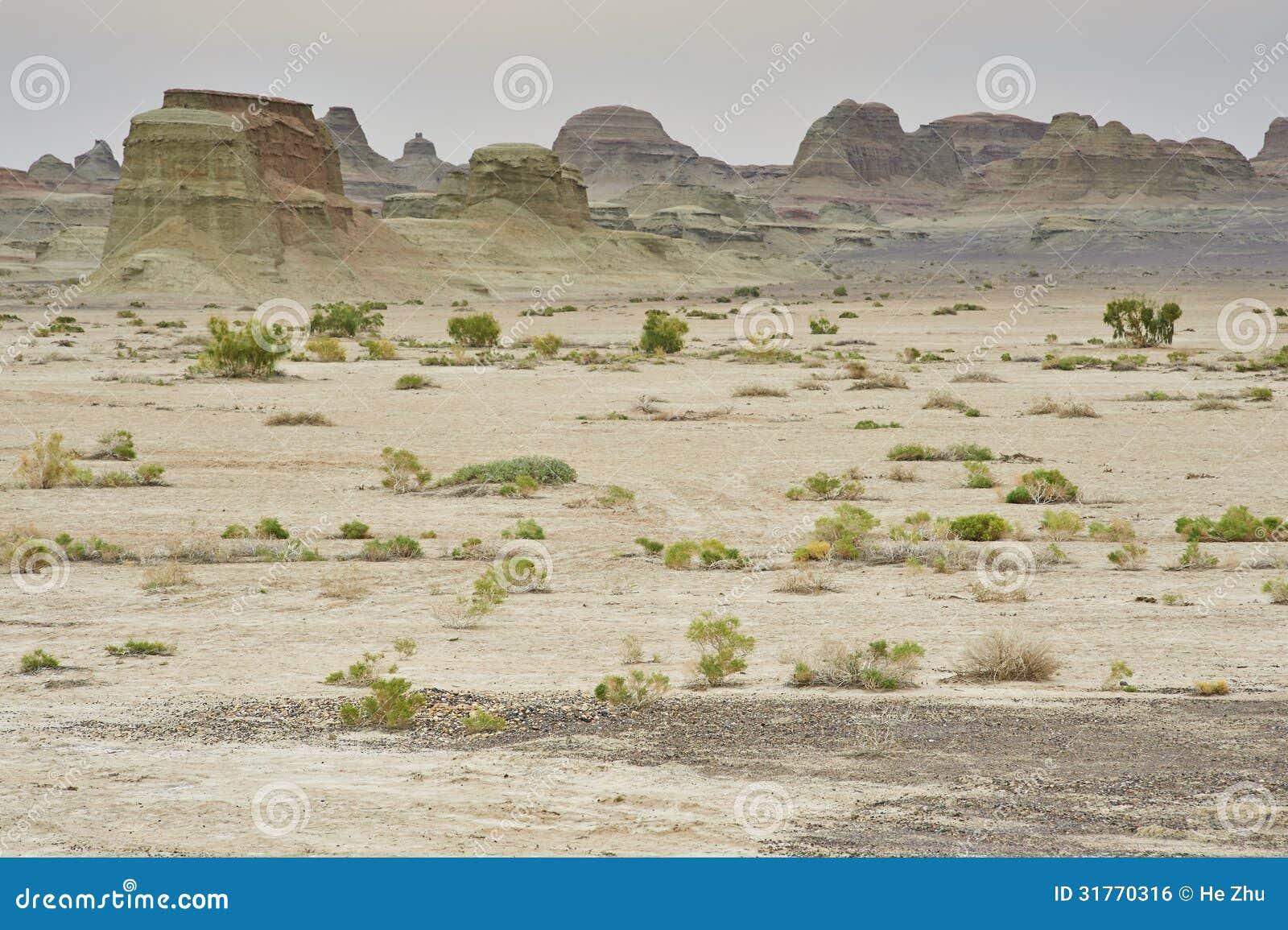 Landform ветровой эрозии