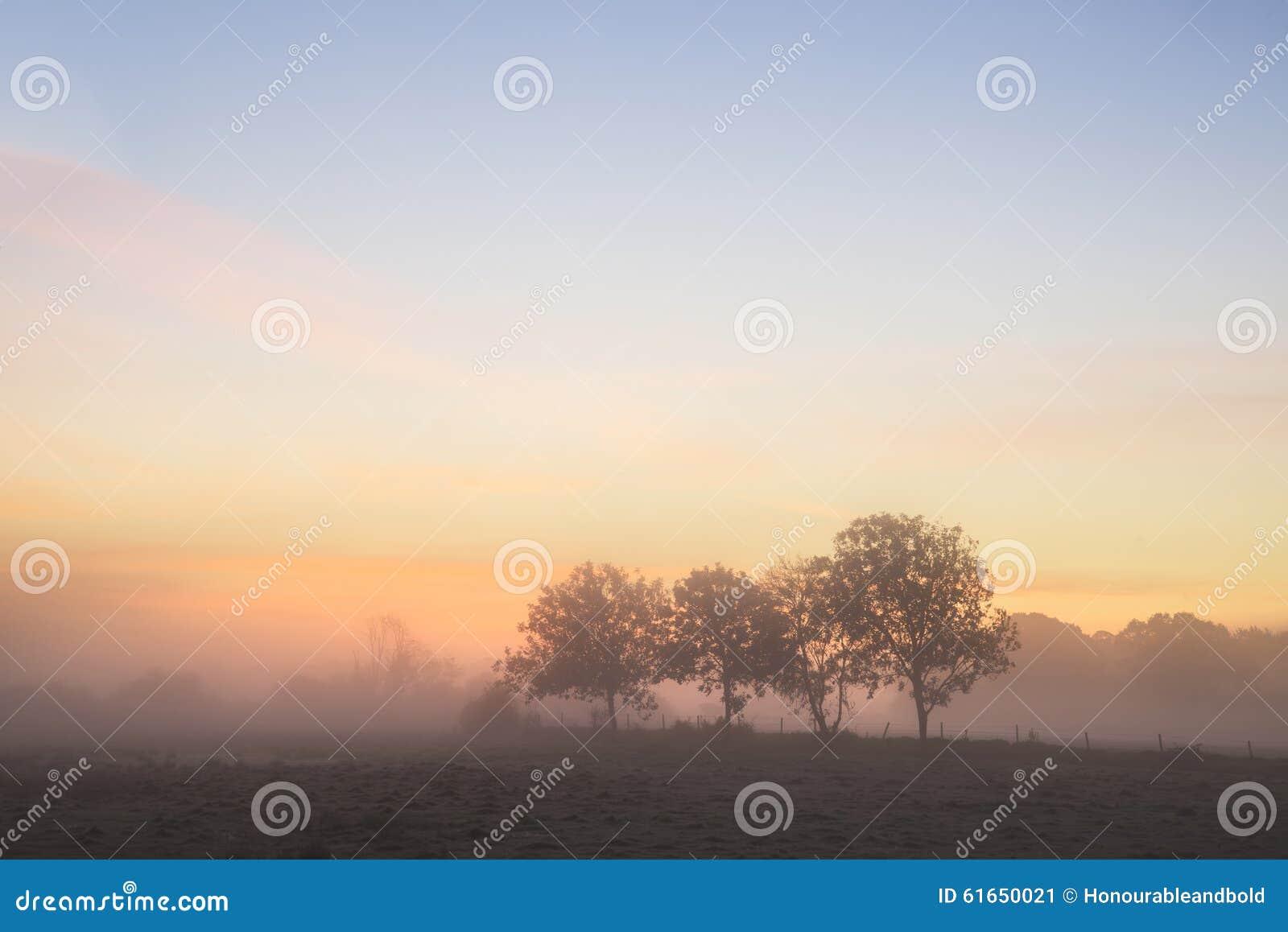 Landsc anglais de campagne de lever de soleil brumeux vibrant renversant d automne