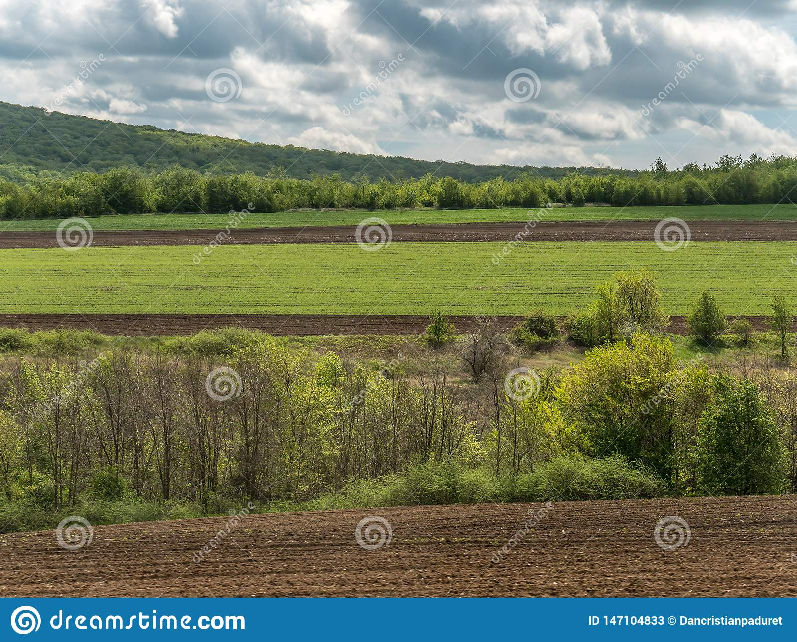 Landscape with Agriculture Fields and Green Areas on a Sunny Day with Cloudy Sky
