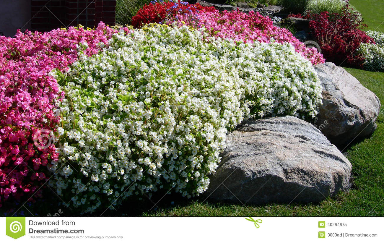 Landscape background with colored flower beds stock photo for Red decorative rocks for landscaping