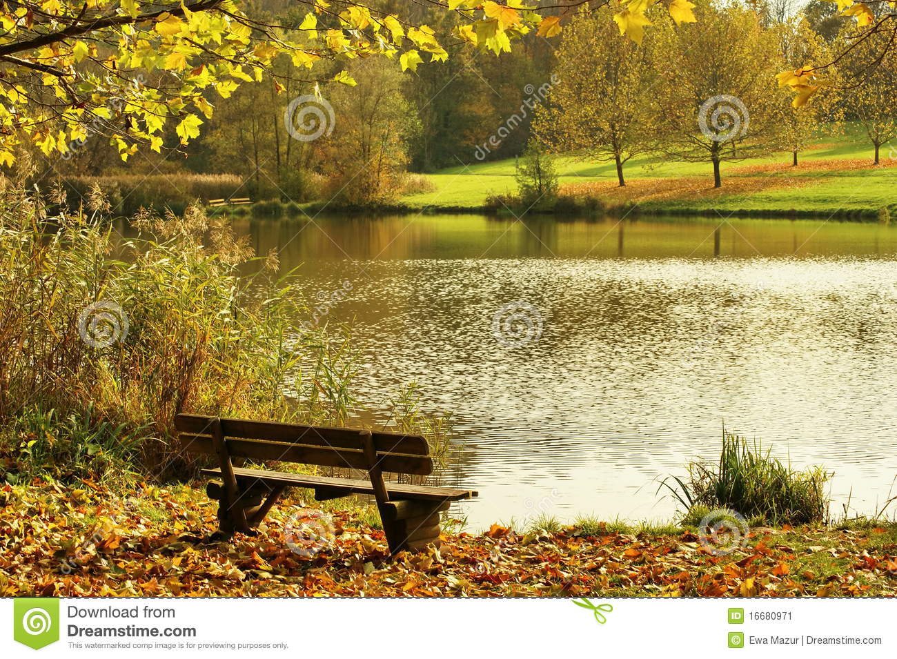 Landscape With Bench Stock Image Image 16680971