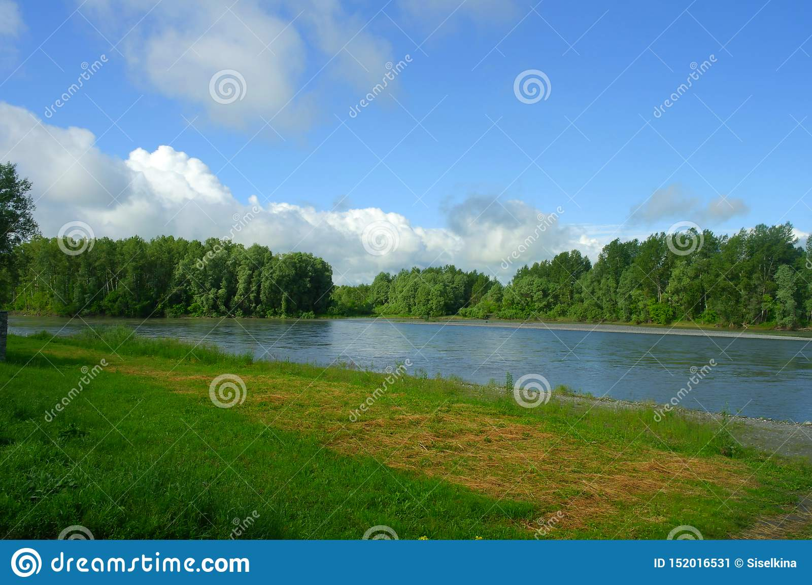 Landscape, blue river flows. Along the banks is bright green grass and forest. Above them is a blue sky with white clouds