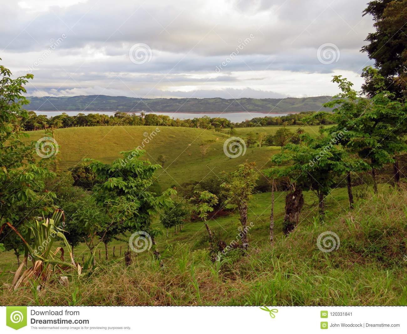 Landscape in Costa Rica with Lake Arenal in Background.