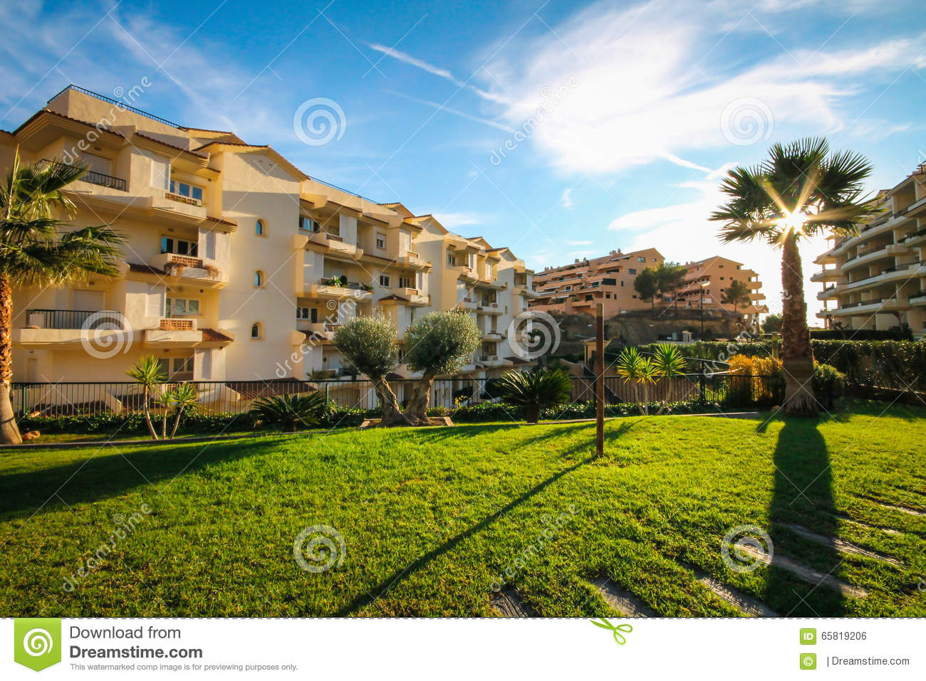 Landscape Design Of The Area With Palm Trees And A Living Fence In