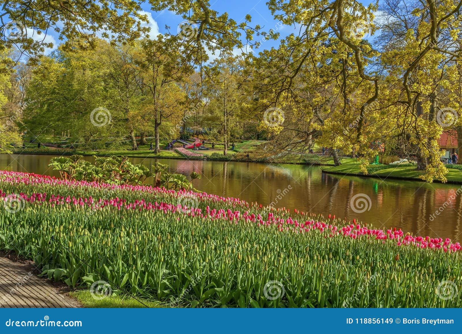Flowerbed In Keukenhof Garden, Nederlands Stock Image - Image of ...